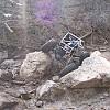 carnage boulder