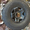 img 3475 by arctycfox