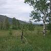 Meadow below Fulford on FS 419 by Whitey