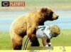 Bear Vs Packers